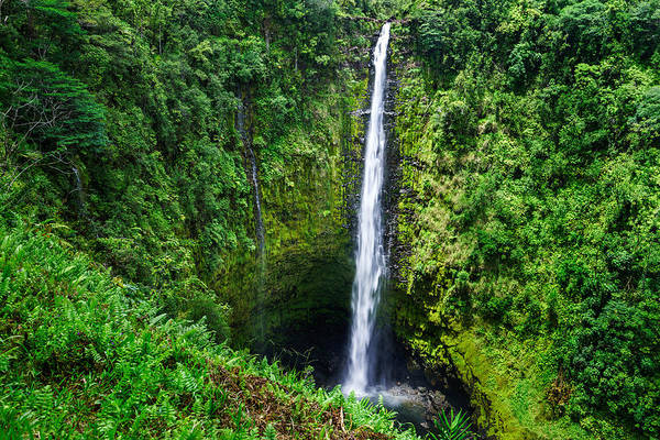 Photograph - Big Island - Akaka Falls by Francesco Emanuele Carucci