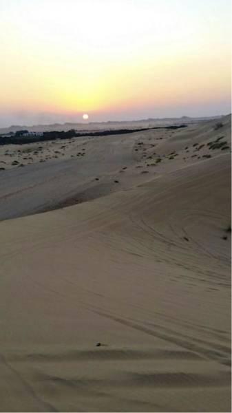 Al Ain Desert 8 Art Print