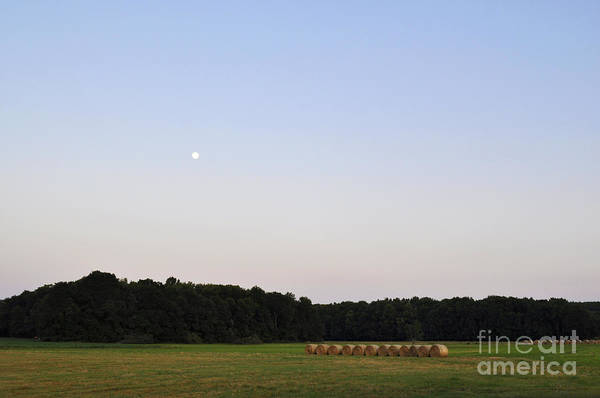 Wall Art - Photograph - Alabama Moonrise by Verana Stark