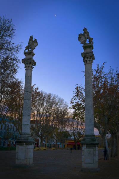 Photograph - Alameda De Hercules by Joan Carroll