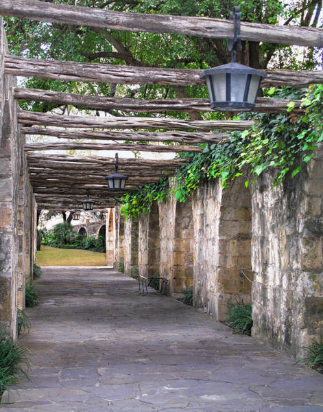 Wall Art - Photograph - Alamo Pathway  by David and Carol Kelly