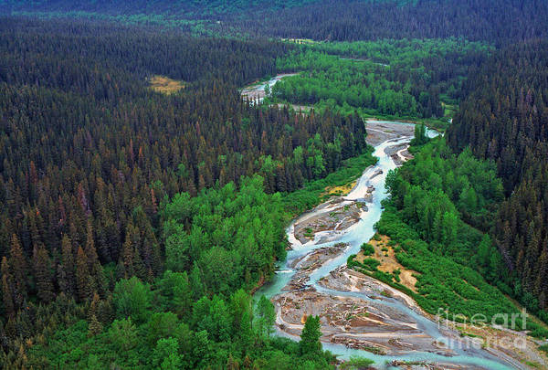 Alaska Green Aerial View Art Print