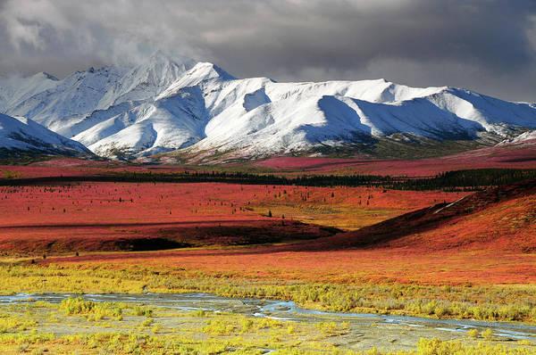 Wall Art - Photograph - Alaska Range, Autumn, Taiga, Denali by Michel Hersen