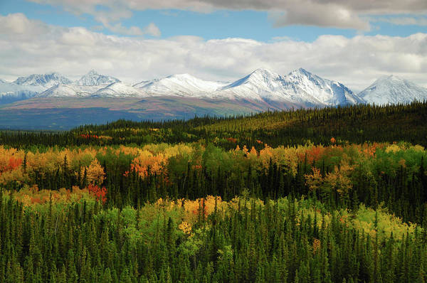 Alaska Photograph - Alaska Range In Autumn, Denali National by Danita Delimont