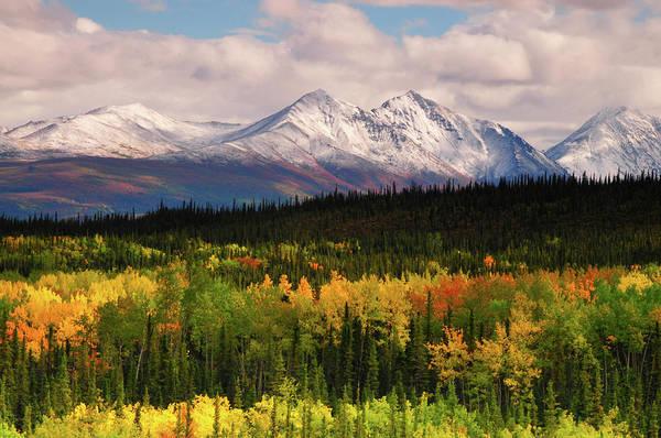 Wall Art - Photograph - Alaska Range In Autumn, Taiga, Tundra by Michel Hersen