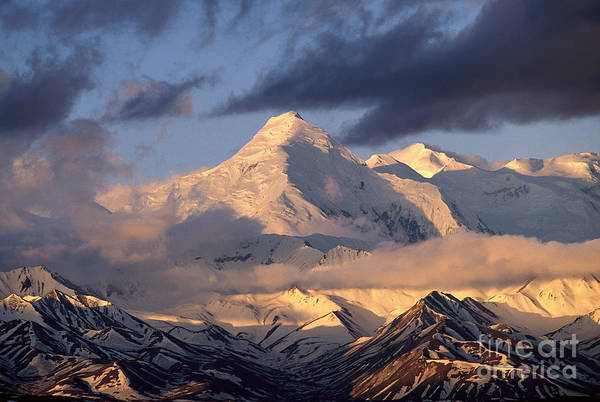 Photograph - Alaska Range Morning by Yva Momatiuk John Eastcott