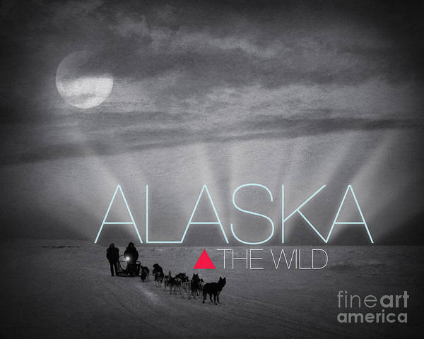 Photograph - Alaska The Wild by Edmund Nagele