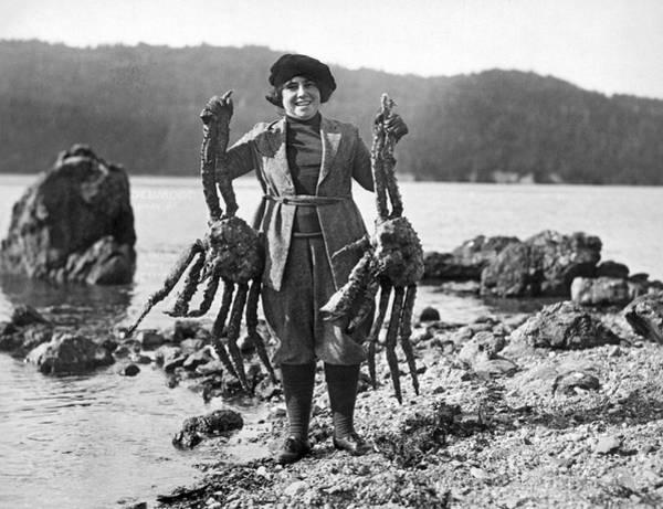 Alaskan Crabs Art Print