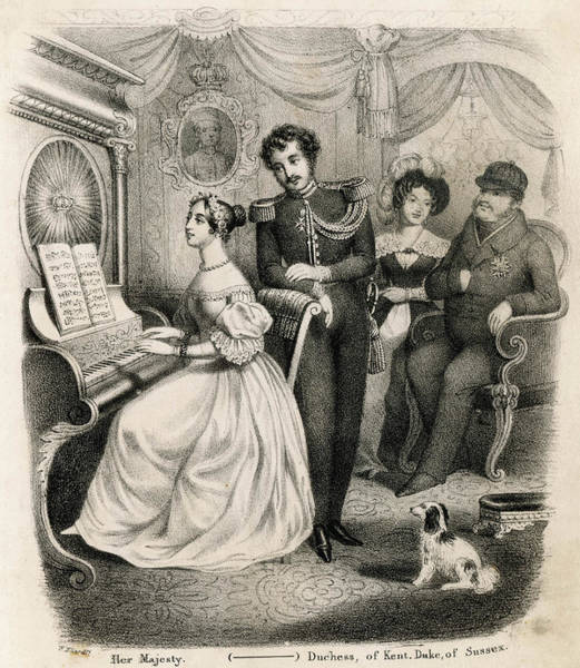 Royal Court Drawing - Albert Comes Courting,  Victoria by Mary Evans Picture Library