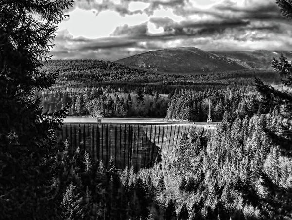 Alder Dam Near Mt Rainer Wa Art Print