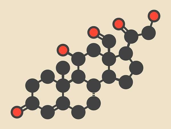 Adrenal Gland Photograph - Aldosterone Hormone Molecule by Molekuul