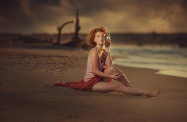 Seashell Photograph - Alena by Evgeny Loza