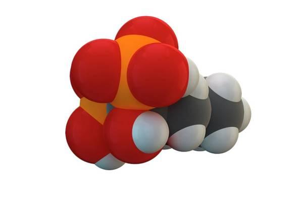 Molecular Wall Art - Photograph - Alendronic Acid Osteoporosis Drug Molecule by Ella Maru Studio / Science Photo Library