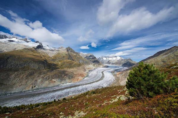 Photograph - Aletsch Glacier by Matthias Hauser