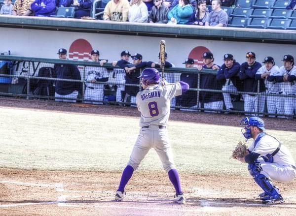 College Baseball Photograph - Alex Bregman by William Morgan