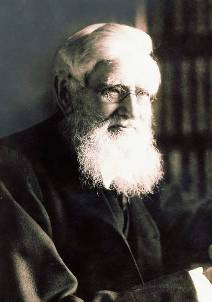 Alfred Russel Wallace Art Print by American Philosophical Society