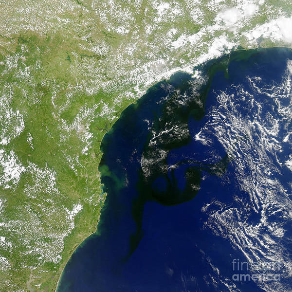 Photograph - Algal Bloom Off Brazil Coast by Science Source