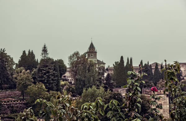 Wall Art - Photograph - Alhambra In The Rain - Spain by Madeline Ellis