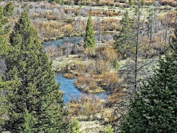 Photograph - Alice Creek by Susan Kinney