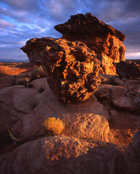 Photograph - Alient Rock Forms by Ray Mathis
