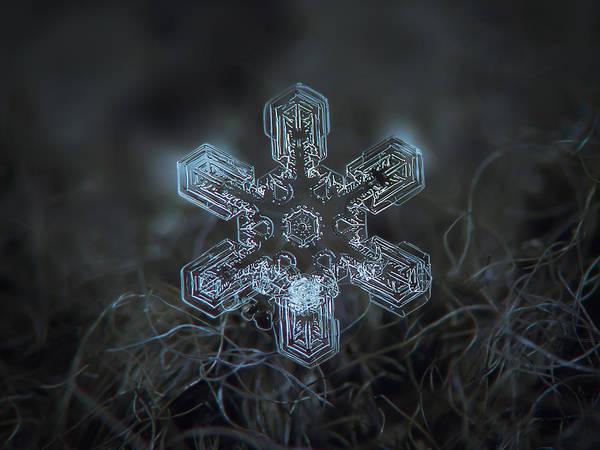 Snowflake Photo - Alioth Art Print