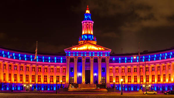 Photograph - All Decked Out In Orange And Blue by Teri Virbickis