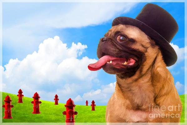 Pug Photograph - All Dogs Go To Heaven by Edward Fielding