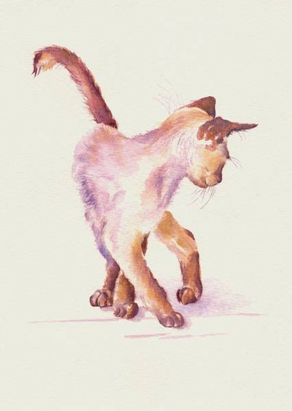 Cat Painting - All Legs And Mischief by Debra Hall