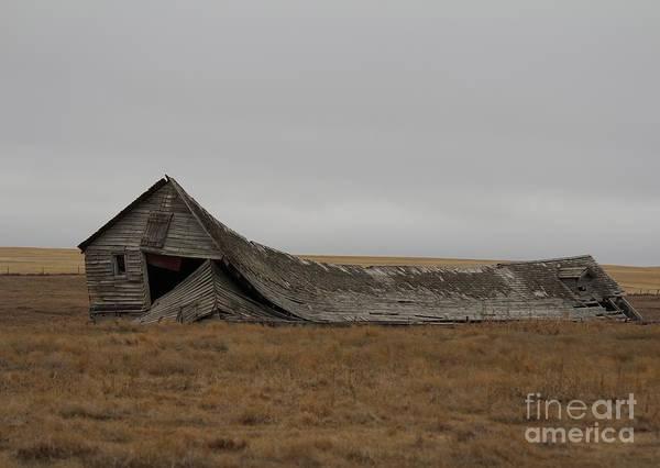 Photograph - All That Remains by Ann E Robson