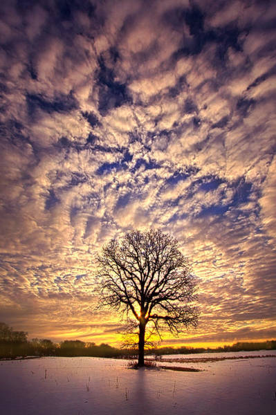 Photograph - All That Still Matters by Phil Koch