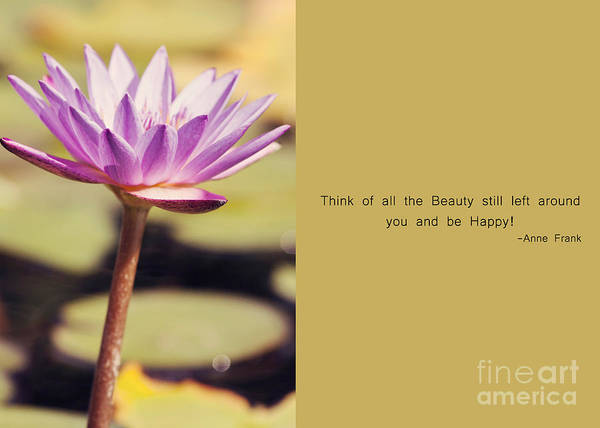 Photograph - All The Beauty by Pam  Holdsworth