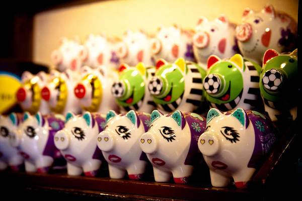Photograph - All The Piggys In A Row by Melinda Ledsome
