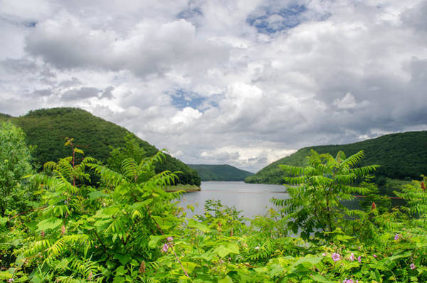 Photograph - Allegheny Reservoir by Guy Whiteley