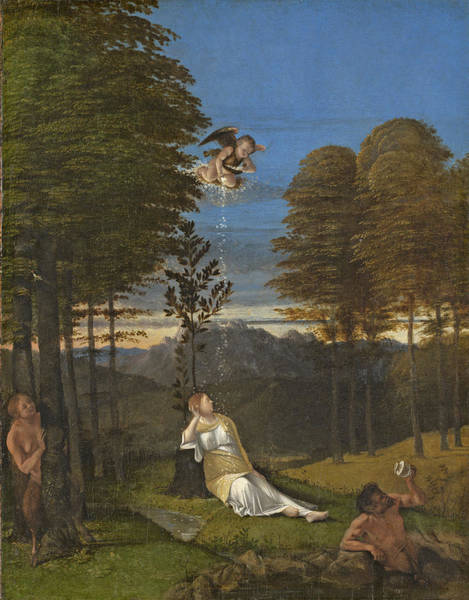 Putto Photograph - Allegory Of Chastity, C. 1505 Oil On Panel by Lorenzo Lotto