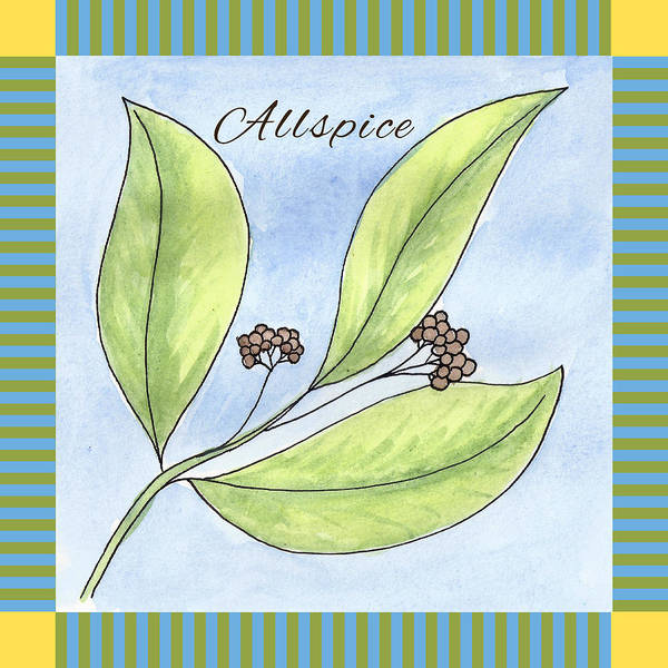 Wall Art - Painting - Allspice Illustration by Christy Beckwith