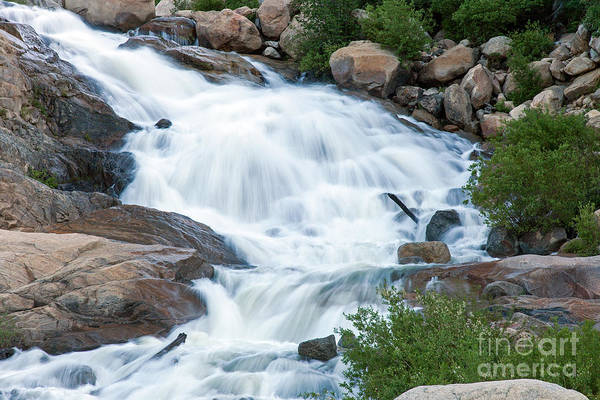 Photograph - Alluvial Fan Falls On Roaring River In Rocky Mountain National Park by Fred Stearns