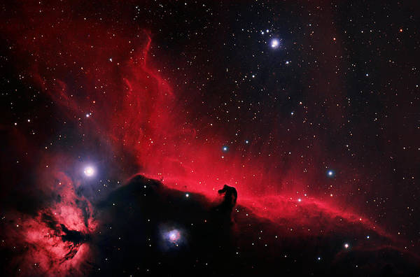 Sombrero Painting - Alnitak Region In Orion by Celestial Images