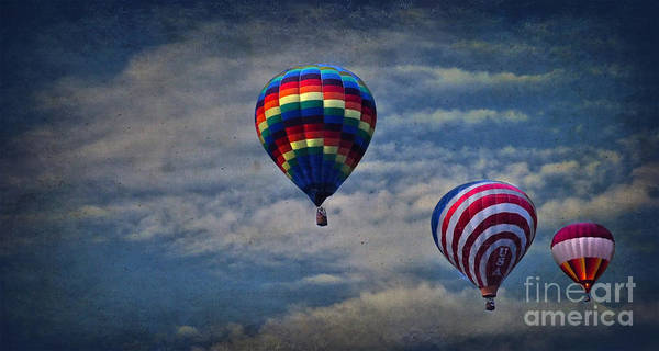 Photograph - Aloft by Debra Fedchin