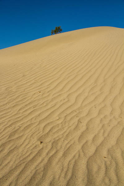 Death Valley Np Photograph - Alone At The Top by Kunal Mehra