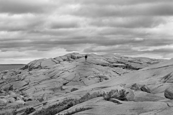 Strolling Photograph - Alone by Betsy Knapp