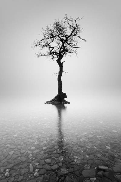 Photograph - Alone by Grant Glendinning
