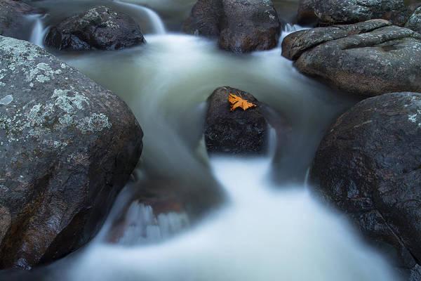 Photograph - Alone In Autumn Splendor by Dustin  LeFevre