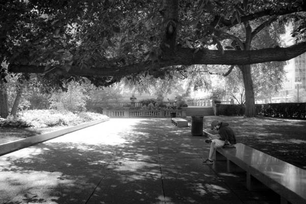 Aic Wall Art - Photograph - Alone In The Park by Debbie Orlando