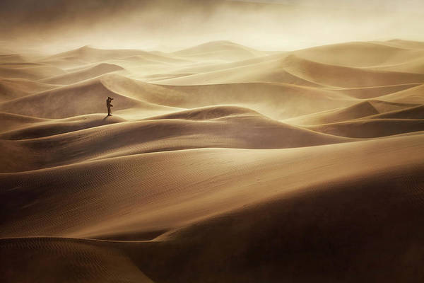 Death Valley Photograph - Alone by Mirko Vecernik
