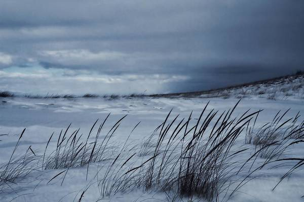 Wall Art - Photograph - Alone On The Beach by Dan Sproul