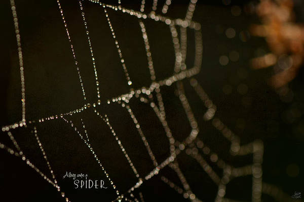 Halloween Photograph - Along Came A Spider by Lisa Knechtel