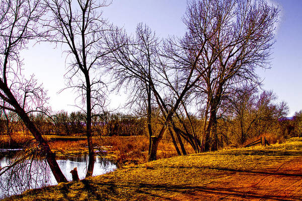 Photograph - Along The Banks Of The South Platte River by David Patterson