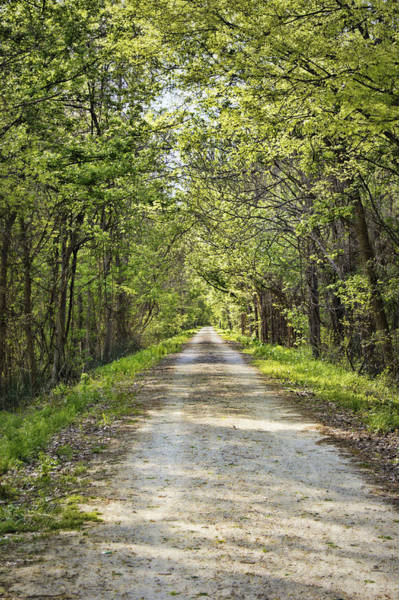Photograph - Along The Katy Trail by Cricket Hackmann