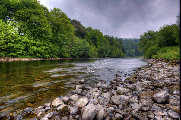 Photograph - Along The River Tay by Matt Swinden