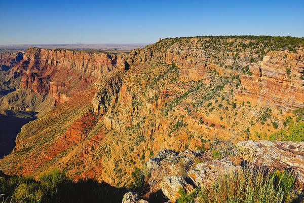 Photograph - Along The South Rim by Greg Norrell